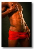 Brian Gallery button - image sculpted male nude torso in red tones